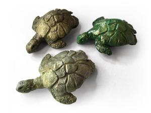 Sea turtles - $50